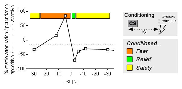 Figure demonstrating timeline of a response to fear